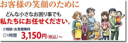 handyman_20120530